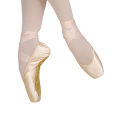 GRISHKO 2007 ProFlex Pointe Shoes