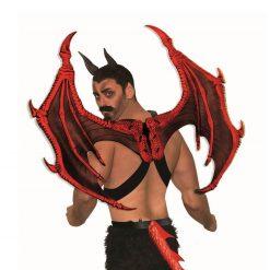 Devil or Dragon Wings/ Ailes rouges de diable ou dragon